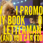 How I Promoted My Book On Letterman (And You Can Too)